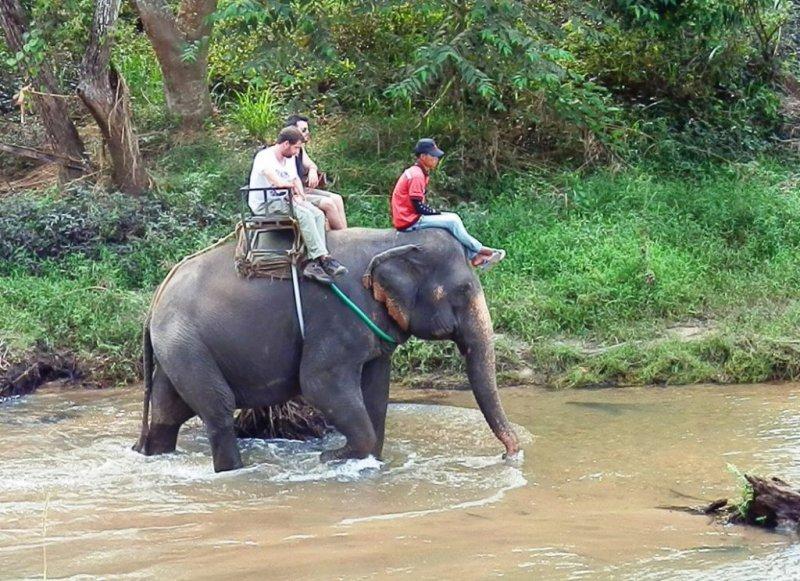 009 Elefanten reiten 1