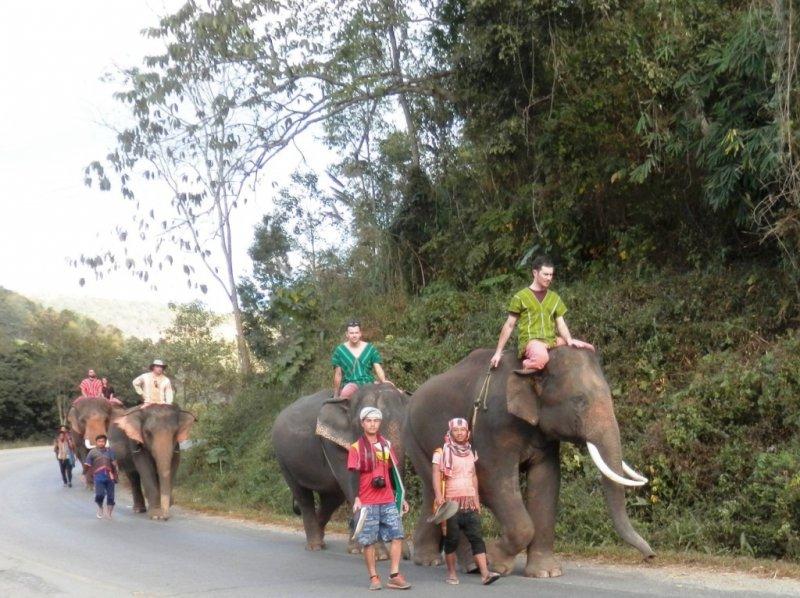 010 Elefanten reiten 2