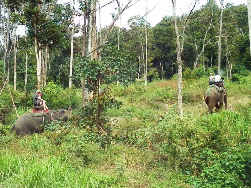 012 Elefanten reiten 4