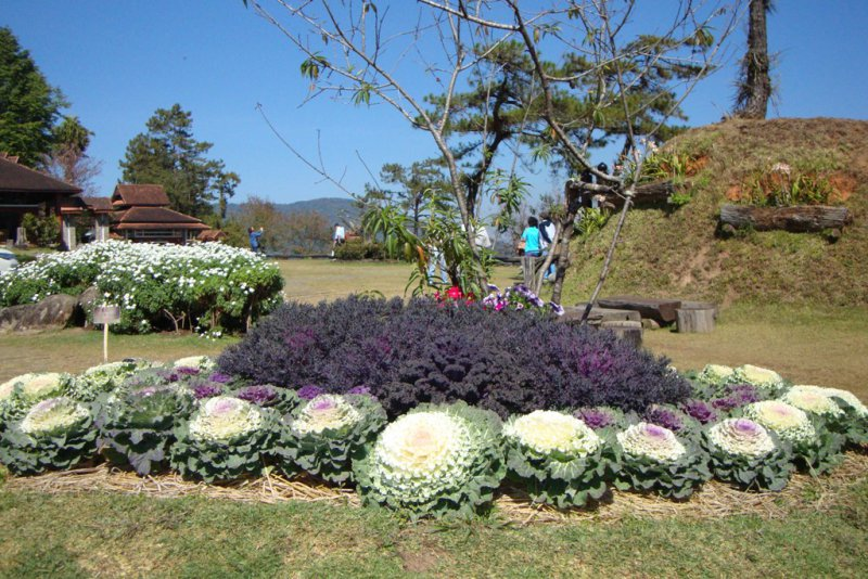 045 Huai Nam Dang National Park 7