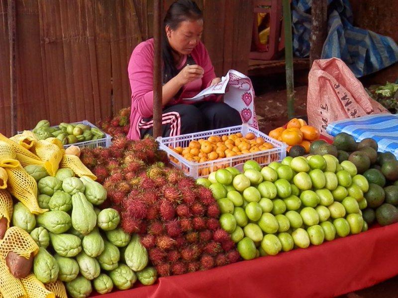 093 Royal Project auf dem Doi Mon Cham bei Mae Rim 3