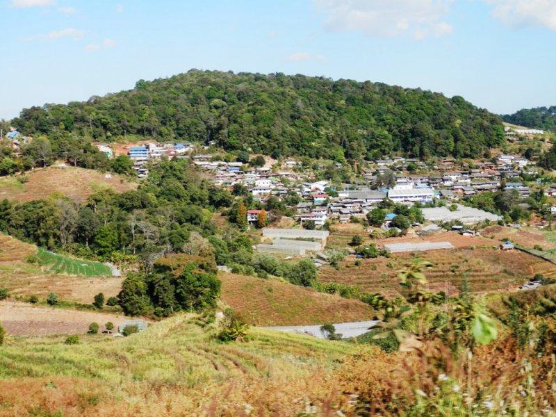 104 Royal Project auf dem Doi Mon Cham bei Mae Rim 14